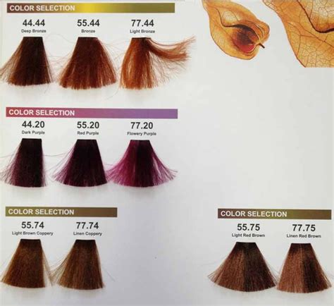 Colors Of Brown Hair Names by New Products Best Professional Hair Color Brand Names