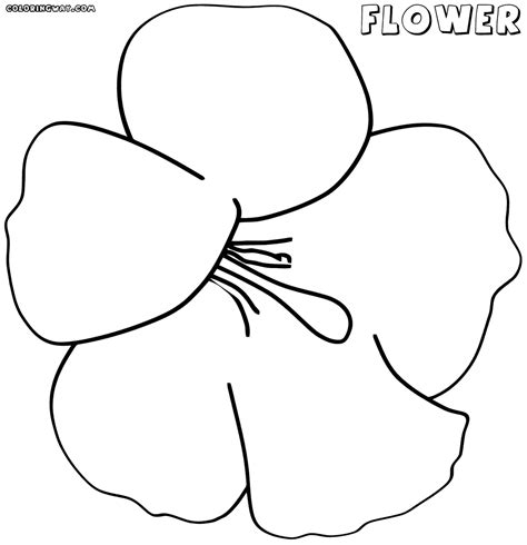 Big Coloring Pages Big Flower Coloring Pages Coloring Pages To And