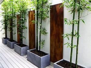 Bambou En Pot Pour Terrasse : comment planter des bambous dans son jardin ~ Louise-bijoux.com Idées de Décoration