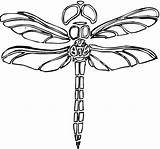 Dragonfly Coloring Pages Dragonflies Printable Drawings Adult Horse Super Crafts Libelula Segments Outline Dibujo Animal Getcoloringpages Para Colorear Trace sketch template