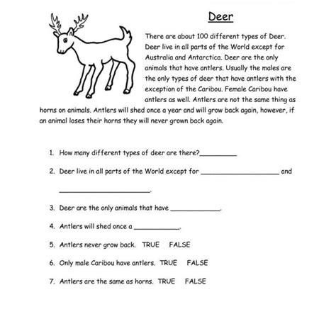 Reading Worksheets For Grade 3 Iancconfcom