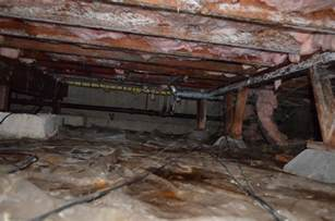 mold growth on joists in crawlspace testing cleanup environix
