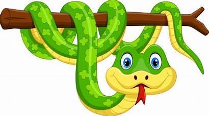 Snake Cartoon Branch Cobra Schlange Slang Tak