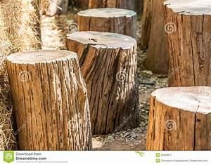 Rondin De Bois Pour Jardin : chaise en bois de rondin en bois photo stock image 49299872 ~ Edinachiropracticcenter.com Idées de Décoration