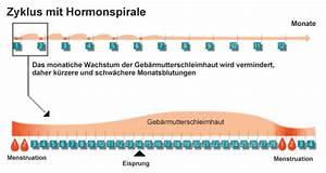 Zyklus Frau Berechnen : der zyklus mit hormonspirale hormon ~ Themetempest.com Abrechnung