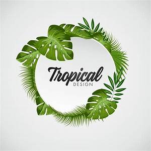 Tropical leaves background Vector | Free Download