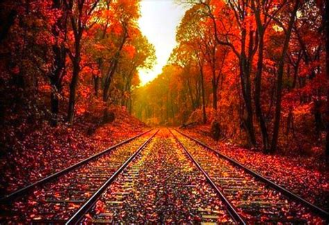 Autumn Fall Desktop Backgrounds by Beautiful Fall Backgrounds Wallpaper Cave