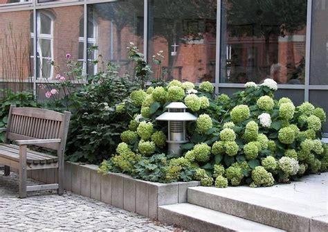 34 Besten Vorgarten, Nordseite Bilder Auf Pinterest