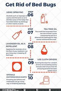best 25 bed bug remedies ideas on pinterest bed bug With bed bugs pillows getting rid
