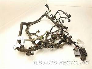 2008 Dodge Dakota Engine Wire Harness