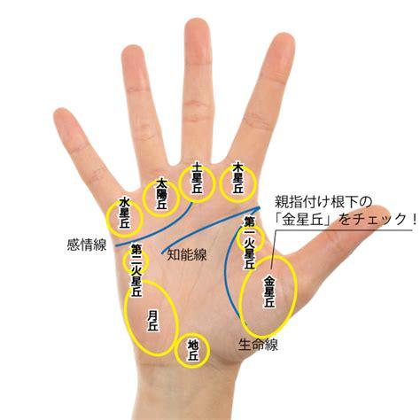 親指 の 付け根 名前