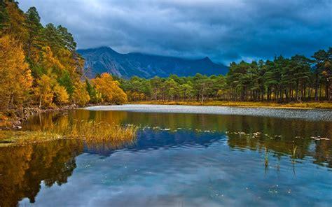 calm lake calico trees peaks wallpapers calm lake calico