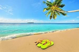 Fond Ecran Mer : fonds d 39 ecran mer ciel plage arecaceae nature t l charger ~ Farleysfitness.com Idées de Décoration