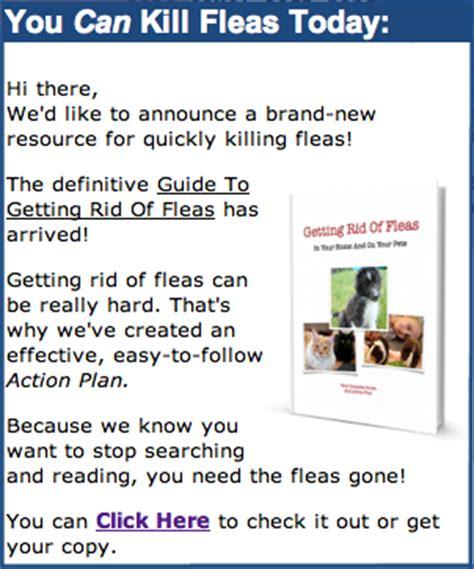 vinegar kills fleas     natural flea killer