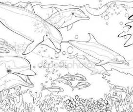 Ocean Coral Reef Dolphin Coloring Pages