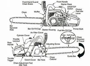 Poulan-pro-pp5020av-best-chainsaw-diagram