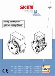 Jcb Generators Sincro Sk160 Alternator Use Maintenance