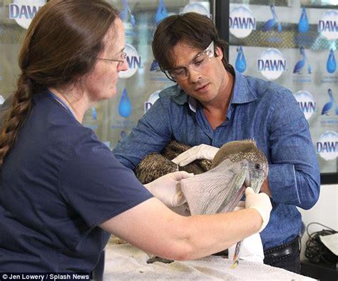 ian somerhalder health ian somerhalder nurses injured birds back to health in