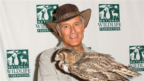 Beloved Wildlife Expert Jack Hanna Diagnosed With Dementia ...