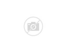 Spongebob Characters As Humans