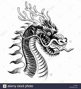 Drachen Schwarz Weiß : traditionelle chinesische drachen tinte schwarz weiss zeichnung stockfoto bild 207299614 alamy ~ Orissabook.com Haus und Dekorationen