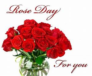 Rose Day: Images Pictures Photos and Wallpapers in HD ...