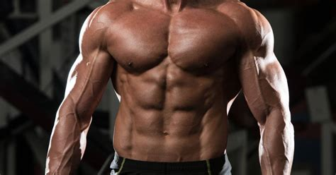 Collagen: The Master Protein | Breaking Muscle