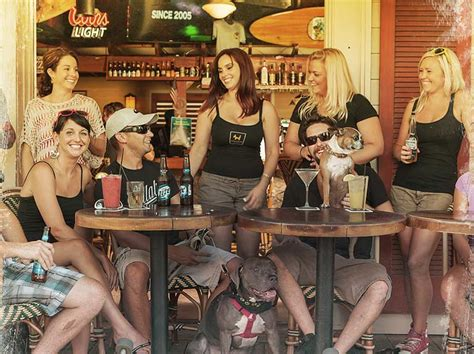 key west bars island dogs rated    bars