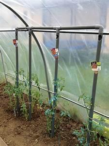 Arrosage Des Tomates : astuce d 39 arrosage pour les tomates il faut penser a ~ Carolinahurricanesstore.com Idées de Décoration