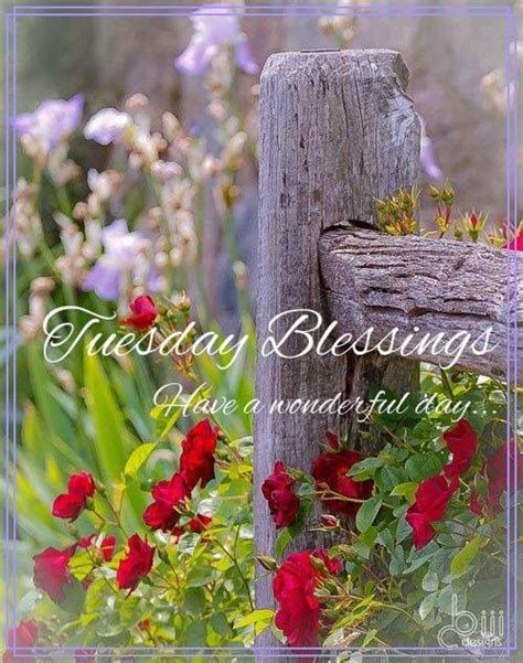 blessed tuesday country fences flower garden
