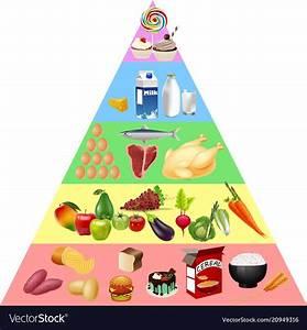 Food Pyramid Images Free