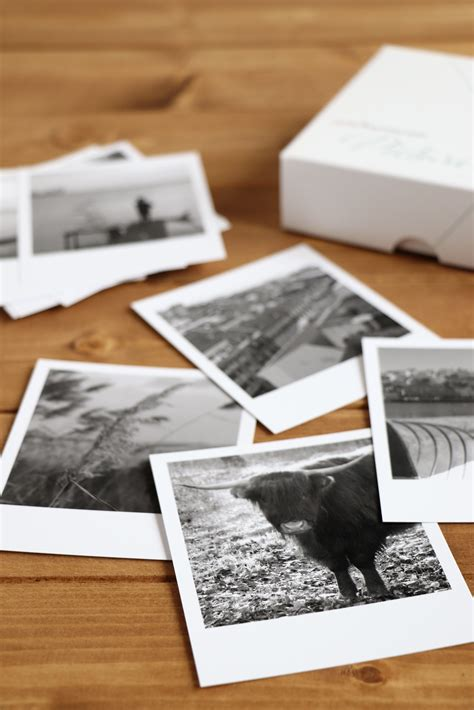 fotos  schwarz weiss fotos umwandeln lavendelblog