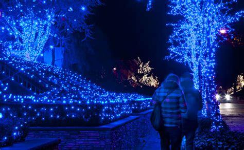 dyker heights christmas lights   york city  slice