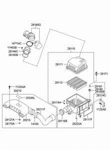 281302h100 - Hyundai Hose Assembly