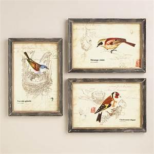 nature birds wall art set of 3 world market With wall art set