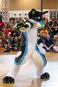 furry dancers crack