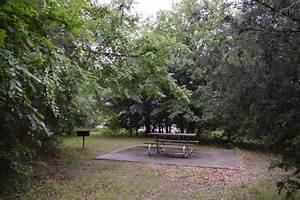 Cooper Lake State Park Group Camping Area  Doctors Creek Unit   U2014 Texas Parks  U0026 Wildlife Department