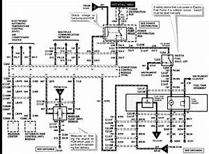 Maf Wiring Diagram