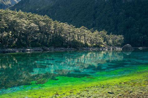 clearest lake in the us the clearest lake in the world is in new zealand 171 twistedsifter