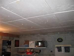 Dalle Plafond Polystyrene : fixation rail sur polystyrene ~ Premium-room.com Idées de Décoration