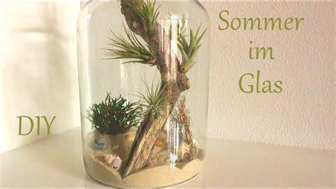 tillandsien im glas diy sommer im glas kleine d 252 nenlandschaft sommerdeko just deko