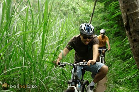 the beaten track in the beaten track cycling routes bali hai tour photo