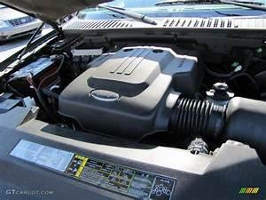 2003 Ford Expedition Eddie Bauer 4 6 Liter Sohc 16
