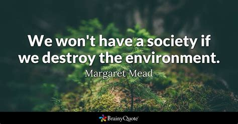 margaret mead  wont   society   destroy