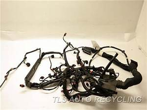 2009 Porsche Cayenne Engine Wire Harness