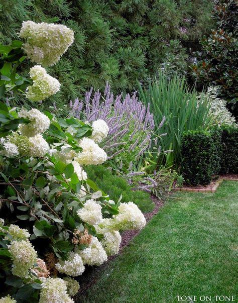 Garten Ideen Mit Lavendel by Hortensien Und Lavendel Garten Garten Ideen Garten