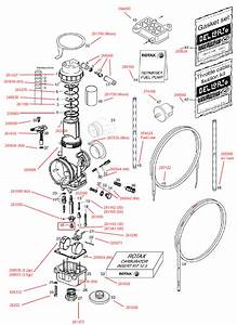 Carburetor  Fuel Pump  Fuel Line