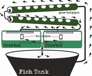 Today Aqua: Ebb and flow aquaponics design