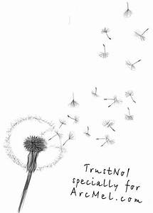 Dandelion Seed Drawing | www.pixshark.com - Images ...