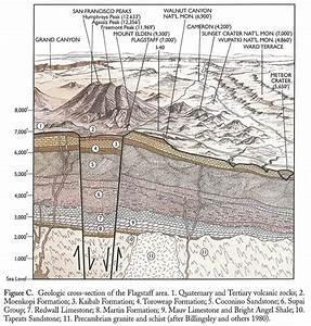 Geologic Cross Section Of The Flagstaff Area  Northern